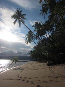 Fiji_2