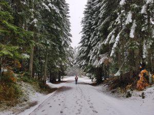 2017 Reisehighlights von Reisebloggern Montenegro